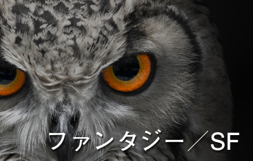 ファンタジー/SF/魔法/冒険/アドベンチャー