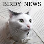 BIRDYニュースチーム