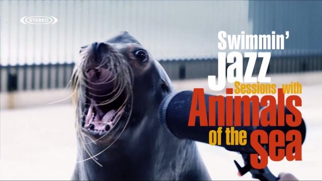 Swimmin'Jazz